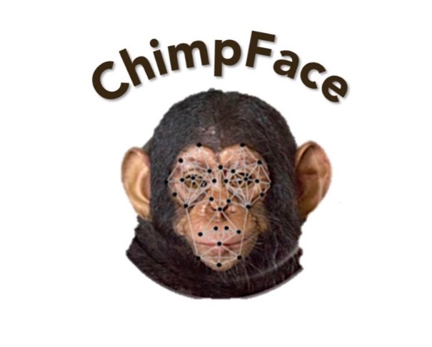 Image result for chimp face ai russo